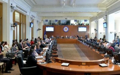 OEA: Carta dirigida al Secretario sobre la candidatura de Flavia Piovesan