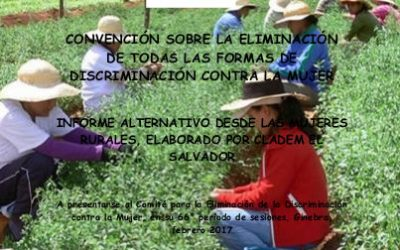 Informe Alternativo Mujer Rural Art. 14 CEDAW.  2016