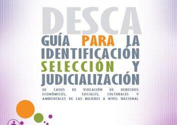 Guía para la identificación, selección y judicialización de casos de violación de derechos económicos, sociales, culturales y ambientales de las mujeres a nivel nacional