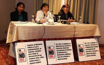 CLADEM presenta preocupaciones a la Relatora Especial sobre la violencia contra la mujer, sus causas y consecuencias, Rashida Manjoo en su visita a Perú