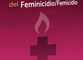 Contribuciones al debate sobre la tipificación penal del Feminicidio-Femicidio. 2011