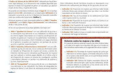 Avance de los derechos de las mujeres y las niñas a 25 años de Beijing, a la luz de los ODS y del Consenso de Montevideo, Reporte: Honduras