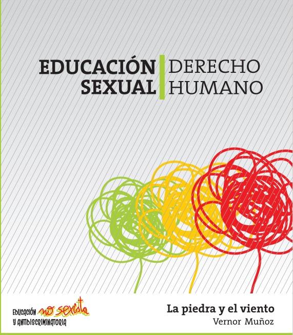 La piedra y el viento de Vernor Muñoz, primer libro de la Campaña